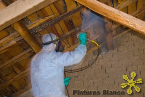 Eliminar polilla y hongo en la madera - Como tratar la madera ...